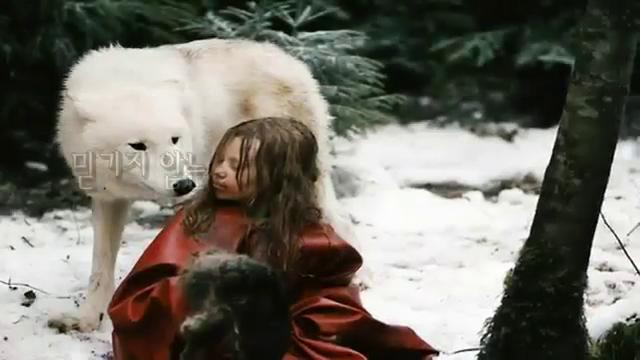 야생동물이 키운 아이들